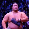 大相撲・明生、奄美大島の両親に背中を押され相撲界へ!子供時代の相撲との出会いは?