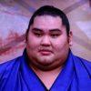 大相撲・大奄美、母と兄に恩返しの相撲人生!子供の頃の相撲との出会いから入門まで!