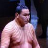 朝青龍の甥っ子、豊昇龍の取組結果【平成31年1月場所】戦績まとめ!